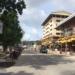 タイ・バンコクの歩き方!ペット事情やSNSまで徹底調査